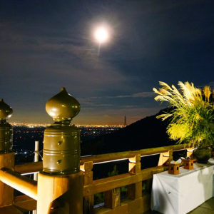 月見の森から望む月