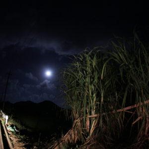 石垣島のうふづき(大月)/十三夜の下で島唄を