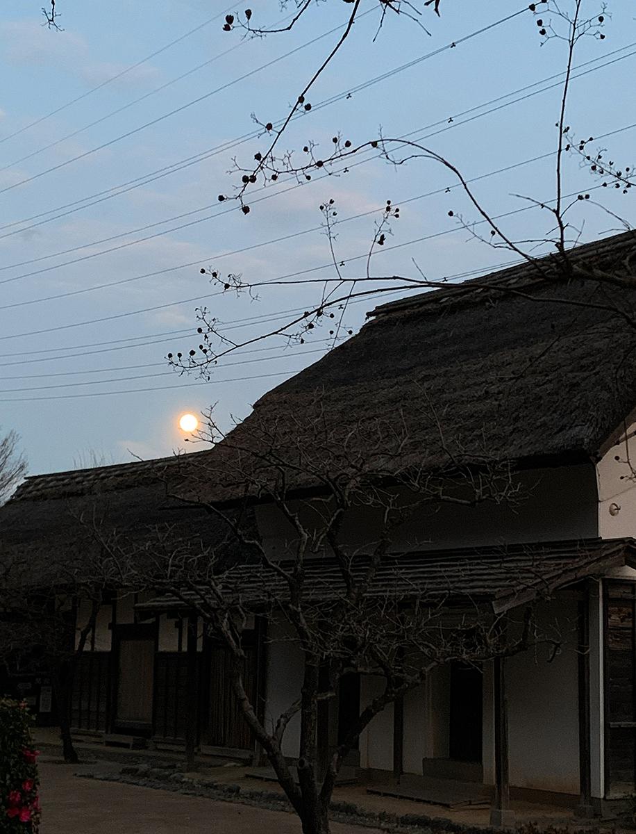 みその公園「横溝屋敷」の月