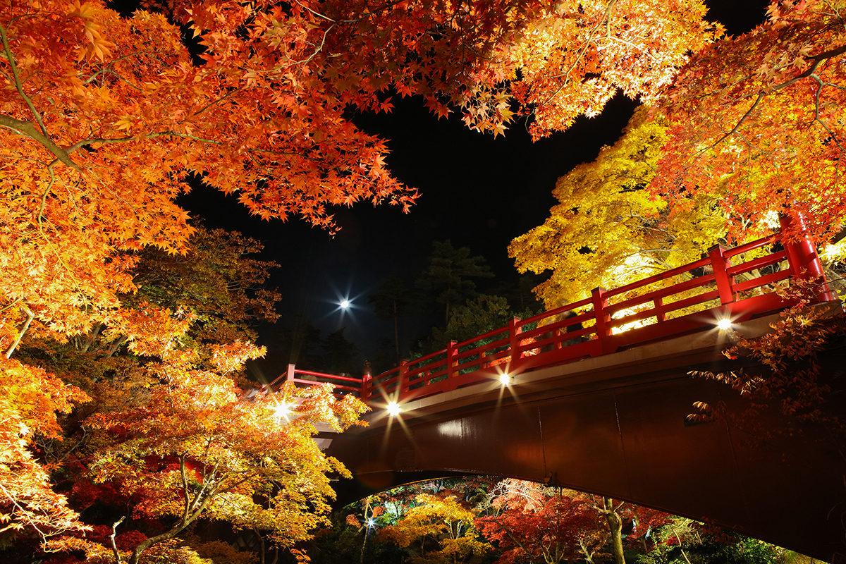 彌彦神社周辺にのぼる月