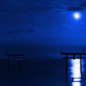 海中鳥居を照らす月